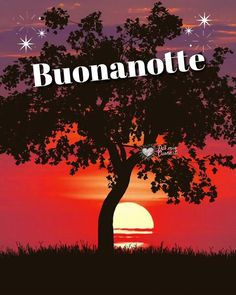 Good Morning Gif, Good Morning Images, Good Morning Quotes, Italian Greetings, Good Night Sweet Dreams, Beautiful Gif, Mini Canvas, Night Quotes, Say Hello