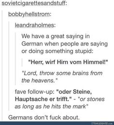 """""""Herr, wirf Hirn vom Himmel, oder Steine, Hauptsache er trifft"""" - Deutsch"""