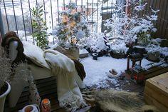 dream gardens: Môj zasnežený zimný balkón