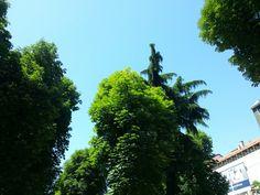 Green town with apps by italia multimedia @ laboratori creativi beretta