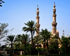mosque by Mohammad Albawe on 500px