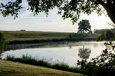 Domaine des Etangs - Etang #lake #nature #France #Massignac