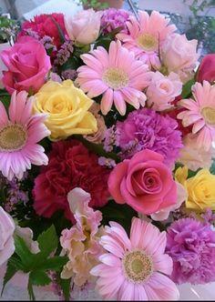 Purple Flowers Wallpaper, Beautiful Flowers Wallpapers, Beautiful Flowers Garden, Amazing Flowers, Beautiful Roses, My Flower, Pretty Flowers, Flower Art, Pink Flowers