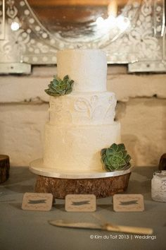 25 Amazingly Awesome All White Wedding Cakes ♥ A three tiered cream wedding cake with tiers in varying height and two echeveria succulents is a rustic delight. Amazing Wedding Cakes, Elegant Wedding Cakes, Wedding Cake Designs, Textured Wedding Cakes, Cream Wedding Cakes, Vintage Wedding Favors, Wedding Cake Rustic, Succulent Wedding Cakes, Succulent Cakes