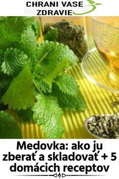 Medovka – ako ju zberať a skladovať + 5 domácich receptov Korn, Herbs, Herb, Grains