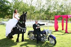 I want a horse like that on my wedding day
