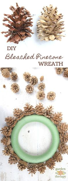Make a bleached pinecone wreath