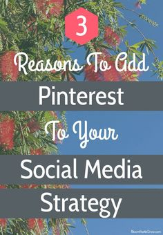 Want more website traffic? Pinterest could be your answer. Here are 3 reasons to add Pinterest to your marketing strategy.