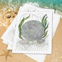 Sea Cell Section No. 2  Drawn to the Sea by DoolallytapDesign
