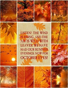 Genial The Wind Is Rising And The Air Is Wild With Leaves. We Have Had Our Summer  Eveninfs, Now For October Eves!