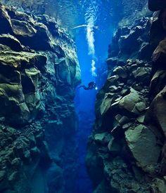 underwater view....