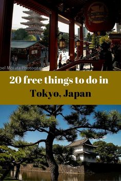 20 free things to do in Tokyo, Japan including tours, free attractions, interesting markets and neighborhoods and other unique activities that are free for visitors. Japan Travel Guide, Tokyo Travel, Asia Travel, Travel Guides, Kyoto, Go To Japan, Visit Japan, Japan Trip, Tokyo Trip