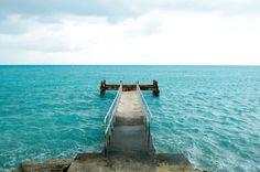 Who would like to swim here?