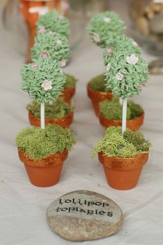 Lollipops + green royal icing + faux moss and tiny terracotta pots= Lollipop topiaries