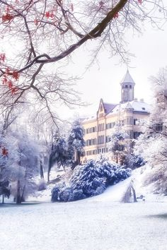 Snow in Waldenburg Castle, Germany