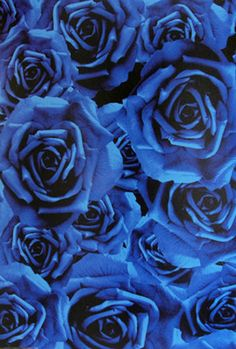 Vie en Rose – Circa Wallcovering | KOKET Textiles #textiles #fabrics #wallcoverings #leathers  see more: http://www.bykoket.com/textiles/fabrics/