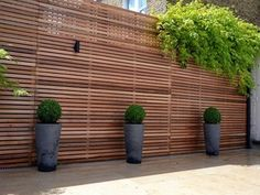 Looking for ideas to decorate your garden fence? Add some style or a little privacy with Garden Screening ideas. See more ideas about Garden fences, Garden privacy and Backyard privacy. Garden Privacy Screen, Outdoor Privacy, Privacy Walls, Backyard Privacy, Backyard Fences, Backyard Landscaping, Outdoor Decor, Privacy Screens, Backyard Ponds
