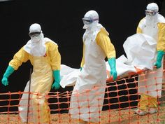 Ebola virus: WHO is taking outbreak 'very seriously' as Saudi Arabia suspends visas over contagion fears