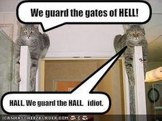 Cats guard the gates to hell.