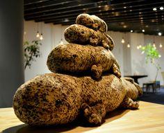 クリスマスの京都水族館に登場!京の里山をイメージした「オオサンショウウオぬいぐるみツリー」|ローカルニュース!(最新コネタ新聞)京都府 京都市|「colocal コロカル」ローカルを学ぶ・暮らす・旅する