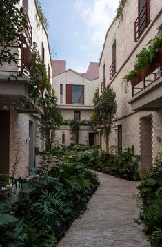 Mexican firm CPDA Arquitectos has completed a residential building that features a stone-clad exterior and a lush courtyard that is not visible from the street. Art Deco Buildings, City Buildings, México City, Small Space Gardening, Apartment Complexes, Amazing Architecture, Landscape Architecture, Greenery, Garden Design