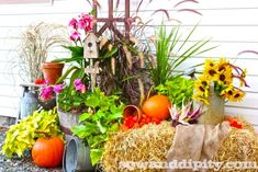 14 Gorgeous Fall Planters to inspire you this season, you'll love these combinations.