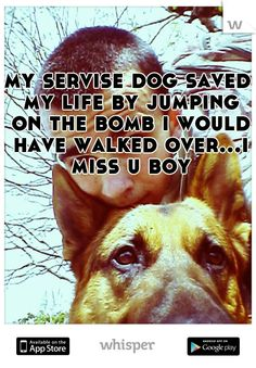 my servise dog saved my life by jumping on the bomb i would have walked over...i miss u boy