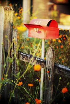 I want this mailbox Rustic Mailboxes, Eleonore Bridge, I Love You Lettering, Mailbox Makeover, Farm Day, Cherry Blossom Girl, 500 Days Of Summer, You've Got Mail, Sketchbook Inspiration