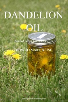 Extra Off Coupon So Cheap Making and using dandelion oil is a simple but practical way to make the most of these yellow weeds that fill our lawns and gardens every year. Use it to treat sore joints and more. Natural Health Remedies, Natural Cures, Natural Healing, Herbal Remedies, Natural Oil, Natural Foods, Natural Beauty, Cold Remedies, Natural Treatments