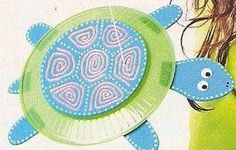 tortuga en plato de plastico