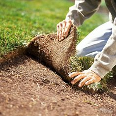 Sod is a hefty investment, so it is critical to prepare the planting area and tend the turf with care. Our helpful tips will tell you the best times to lay sod so that it can quickly root. Sod is a hefty investment, so it is critical to know these tips. Low Maintenance Landscaping, Low Maintenance Garden, Landscaping Tips, Front Yard Landscaping, Modern Landscaping, Diy Herb Garden, Herb Garden Design, Garden Edging, Garden Paths