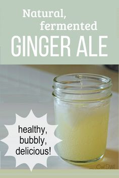 How to make naturally-carbonated ginger ale - soda that's good for you! How to make fermented, naturally-carbonated ginger ale, delicious and good for you too! Ginger Soda, Ginger Bug, Healthy Juices, Healthy Drinks, Healthy Recipes, Healthy Food, Vegetarian Recipes, Homemade Ginger Ale, Fermentation Recipes