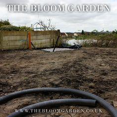 Garden Renovation www.thebloomgarden.co.uk