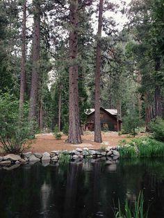 Forest Cabin, Mt. Hood, Oregon photo via ashley