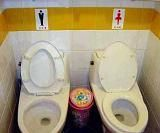 His and Hers toilets  Too much togetherness?