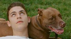 Hero & his dog Diesel Diesel, All American Boy, Hardin Scott, After Movie, Hessa, Hero 3, British Actors, Actor Model, Fan Fiction