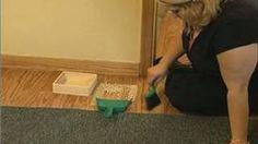 Atividades pré-escola Montessori: varrer Montessori Atividades, via YouTube.