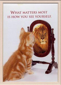一番大事なのは、自分自身をどう見るか。