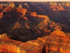 Grand Canyon Bathed in Sunlight Reproduction photographique par Shubroto Chattopadhyay sur AllPosters.fr