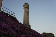"""500px / Photo """"Alcatraz Lighthouse"""" by Dan Sobel"""