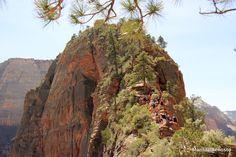 Hiking Zion's Angels Landing