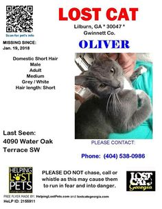 Lost Cat - Lilburn GA - Jan. 19 2018 Closest Intersection - Hickory Ridge Way and Water Oak Terrace County - Gwinnett  #LOSTCAT #Oliver #Lilburn (Hickory Ridge Way and Water Oak Terrace)  #GA 30047 #Gwinnett Co.  #Cat 01-19-2018! Male #Domestic Short Hair Grey / White/  CONTACT(404) 538-0986  More Info Photos and to Contact: http://ift.tt/2Bisr2P  To see this pets location on the HelpingLostPets Map: http://ift.tt/2mYya9R  Let's get Oliver home! #lostcatsgeorgia  #HelpingLostPets