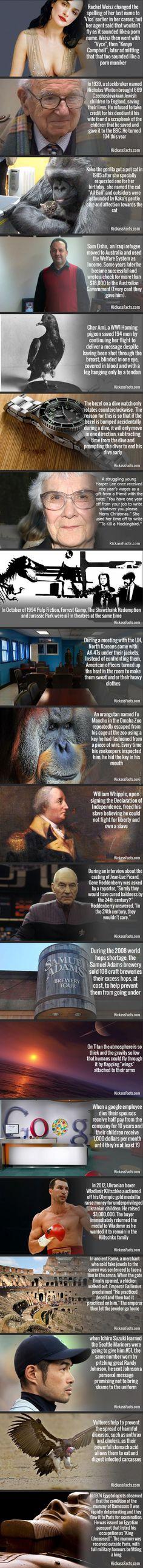 Kick ass facts #1