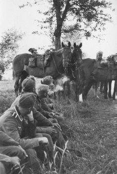 """Panzer-terror: """"Uma fumaça ao lado dos cavalos, França, 1940""""."""