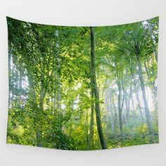 Sunlight in a broadleaf forest on a summer day. One of my best sold works, many thanks all supporters and buyers! <br/> Landscape, nature, light...