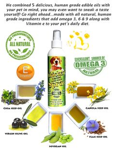 Bacon spray for dry dog food is made in the USA with all natural, human grade ingredients. Great for Vegan dog diets and picky eaters Canned Dog Food, Dry Dog Food, All Natural Dog Food, Roast Chicken Flavours, Holistic Dog Food, Edible Oil, Dog Diet, Foods With Gluten, Meal Deal