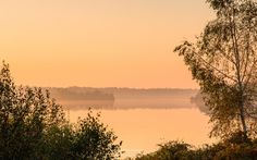 Photo Golden Lake in nature reserve Reindersmeer part of National Park De…
