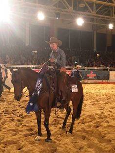 Die Champions: Cordula Hugo und A Little Bit Surprised. © Americana Facebook Hugo, Champion, Horses, Facebook, Sport, Animals, Western Horse Riding, Animales, Deporte