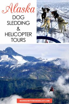 Dog Sledding and helicopter tours in Juneau, Alaska Dog Sledding Alaska, Alaska Dog, Juneau Alaska, Alaska Travel, Adventures Abroad, Time Travel, Travel Tips, Helicopter Tour, Tours