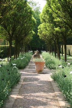 Cothay Manor, Somerset garden